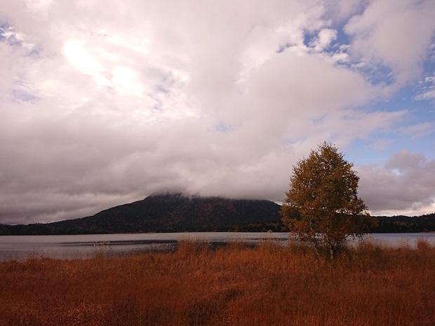 画像7: 【山旅会・登山ガイドこだわりツアー】添乗員からの便り・大清水から尾瀬沼