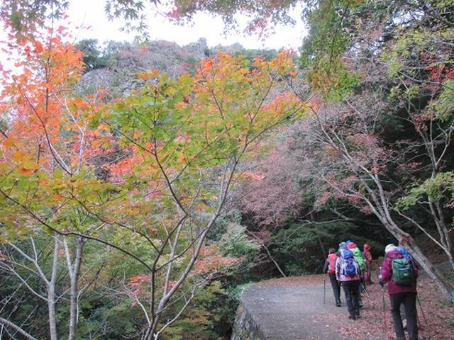 画像6: 【山旅会・登山ガイドこだわりツアー】岡田ガイドからの便り・飯野山と小豆島ツアーのご案内