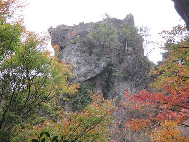 画像7: 【山旅会・登山ガイドこだわりツアー】岡田ガイドからの便り・飯野山と小豆島ツアーのご案内