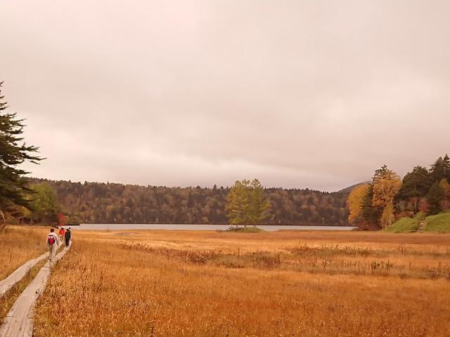 画像4: 【山旅会・登山ガイドこだわりツアー】添乗員からの便り・尾瀬沼から沼田街道