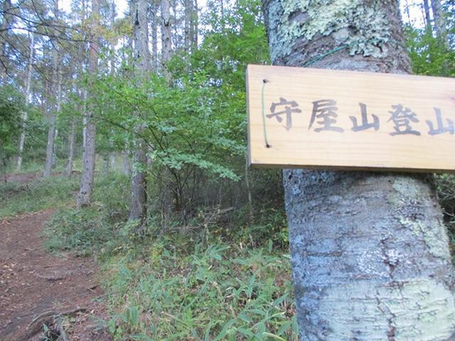 画像1: 【山旅会・登山ガイドこだわりツアー】岡田ガイドからの便り・守屋山の下見にいってまいりました!