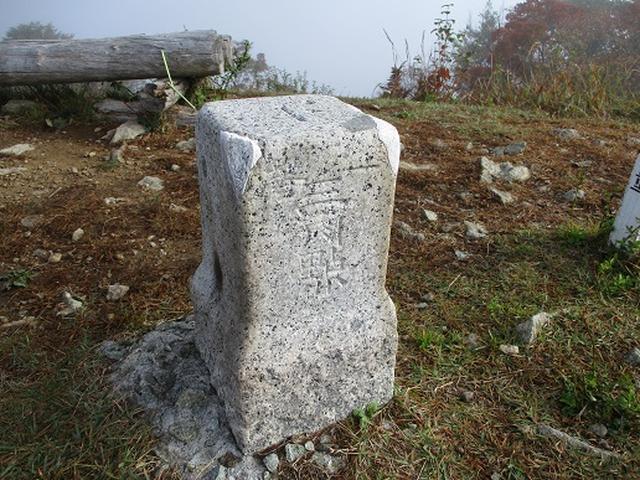 画像11: 【山旅会・登山ガイドこだわりツアー】岡田ガイドからの便り・守屋山の下見にいってまいりました!