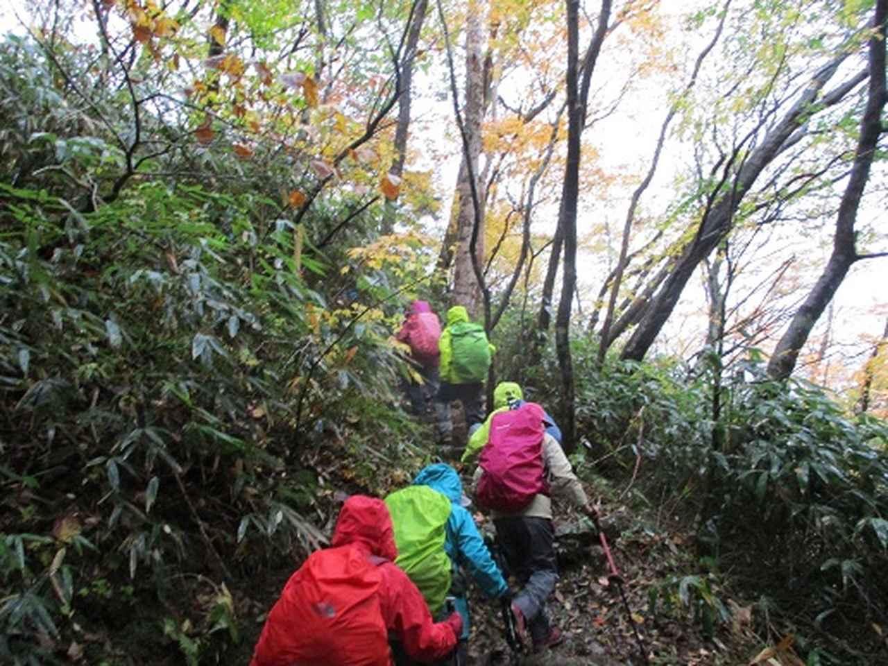 画像1: 【山旅会・登山ガイドこだわりツアー】岡田ガイドからの便り・那須ツアーにいってまいりました!(その2)