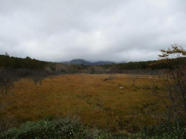 画像9: 【山旅会・登山ガイドこだわりツアー】岡田ガイドからの便り・那須ツアーにいってまいりました!(その2)