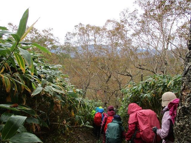 画像5: 【山旅会・登山ガイドこだわりツアー】岡田ガイドからの便り・那須ツアーにいってまいりました!(その2)