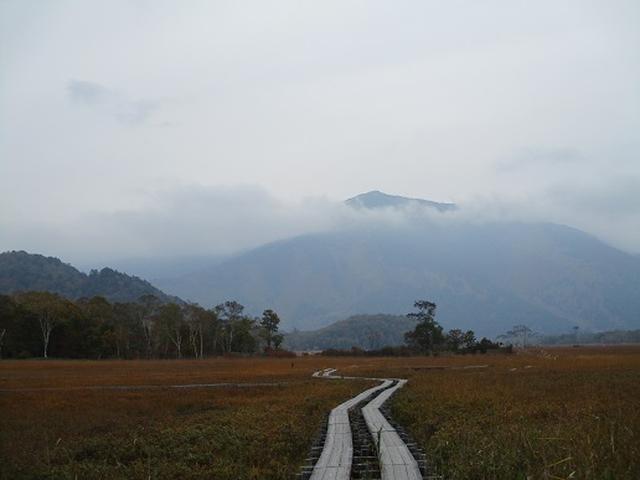 画像7: 【山旅会・登山ガイドこだわりツアー】添乗員からの便り・尾瀬燧裏林道ツアーにいってまいりました!(その1)
