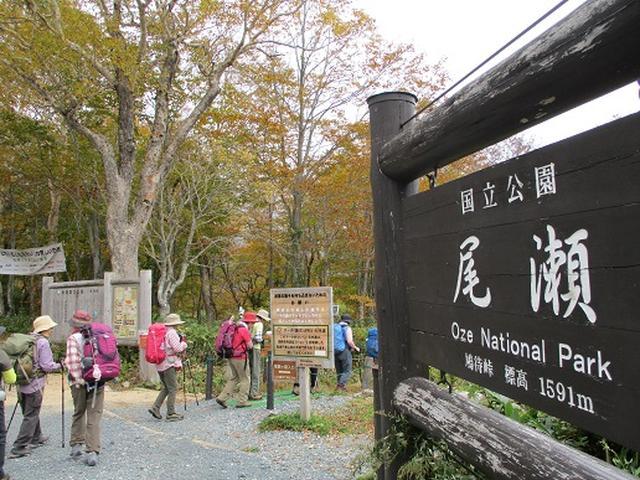 画像1: 【山旅会・登山ガイドこだわりツアー】添乗員からの便り・尾瀬燧裏林道ツアーにいってまいりました!(その1)