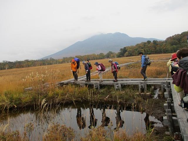 画像9: 【山旅会・登山ガイドこだわりツアー】添乗員からの便り・尾瀬燧裏林道ツアーにいってまいりました!(その1)