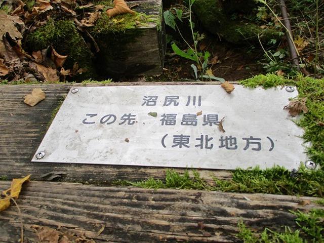 画像11: 【山旅会・登山ガイドこだわりツアー】添乗員からの便り・尾瀬燧裏林道ツアーにいってまいりました!(その1)