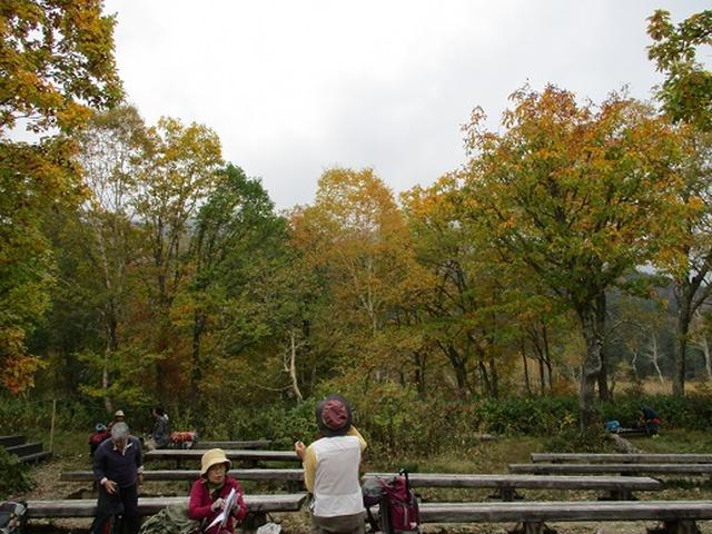 画像5: 【山旅会・登山ガイドこだわりツアー】添乗員からの便り・尾瀬燧裏林道ツアーにいってまいりました!(その1)