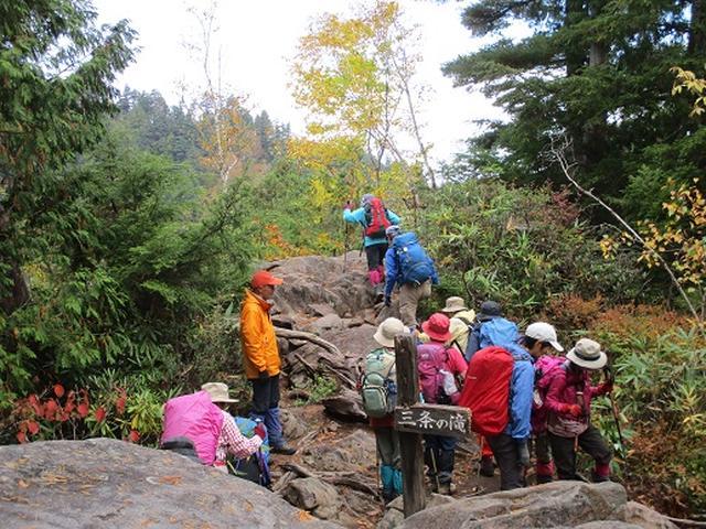 画像7: 【山旅会・登山ガイドこだわりツアー】添乗員からの便り・尾瀬燧裏林道ツアーにいってまいりました!(その2)