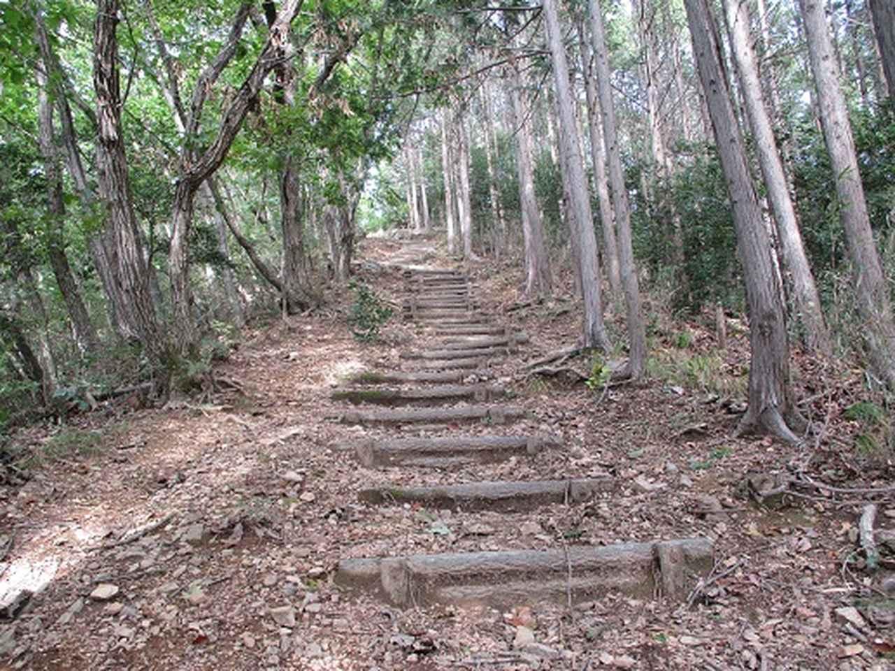 画像6: 【山旅会・登山ガイドこだわりツアー】岡田ガイドからの便り・足利行道山の下見にいってまいりました!