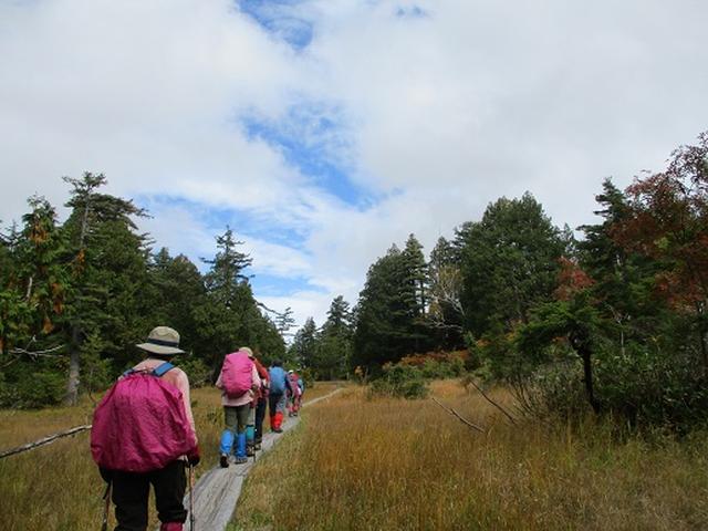 画像9: 【山旅会・登山ガイドこだわりツアー】添乗員からの便り・尾瀬燧裏林道ツアーにいってまいりました!(その3)