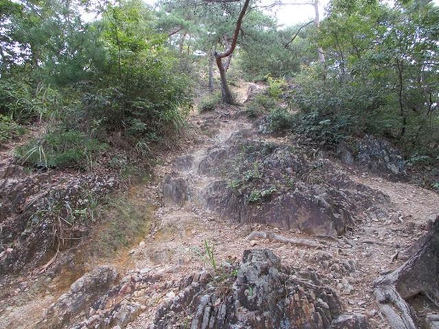 画像2: 【山旅会・登山ガイドこだわりツアー】岡田ガイドからの便り・足利行道山の下見にいってまいりました!