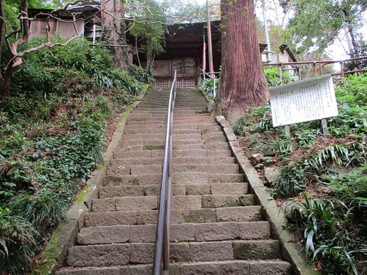 画像7: 【山旅会・登山ガイドこだわりツアー】岡田ガイドからの便り・足利行道山の下見にいってまいりました!
