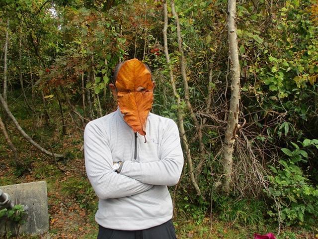 画像6: 【山旅会・登山ガイドこだわりツアー】添乗員からの便り・尾瀬燧裏林道ツアーにいってまいりました!(その3)