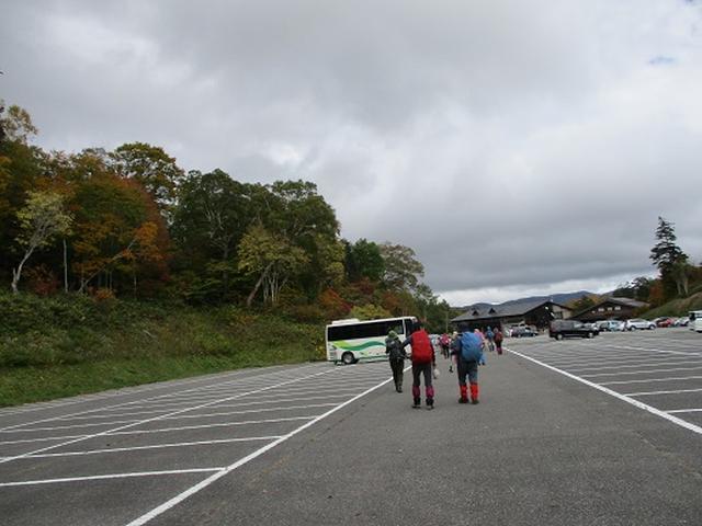 画像14: 【山旅会・登山ガイドこだわりツアー】添乗員からの便り・尾瀬燧裏林道ツアーにいってまいりました!(その3)
