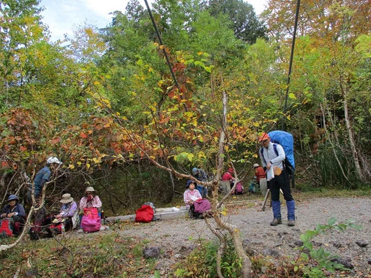 画像5: 【山旅会・登山ガイドこだわりツアー】添乗員からの便り・尾瀬燧裏林道ツアーにいってまいりました!(その3)