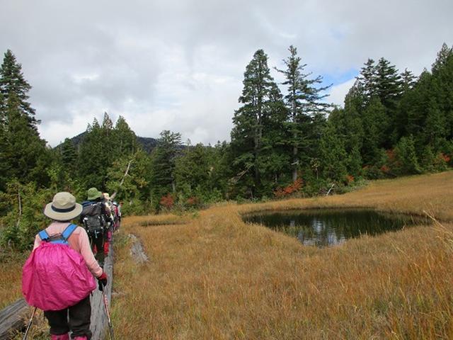 画像10: 【山旅会・登山ガイドこだわりツアー】添乗員からの便り・尾瀬燧裏林道ツアーにいってまいりました!(その3)