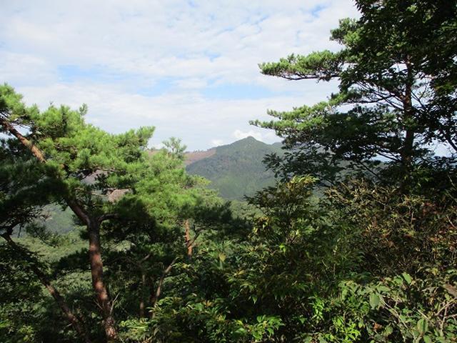 画像5: 【山旅会・登山ガイドこだわりツアー】岡田ガイドからの便り・足利行道山の下見にいってまいりました!