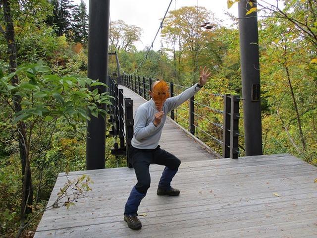 画像7: 【山旅会・登山ガイドこだわりツアー】添乗員からの便り・尾瀬燧裏林道ツアーにいってまいりました!(その3)
