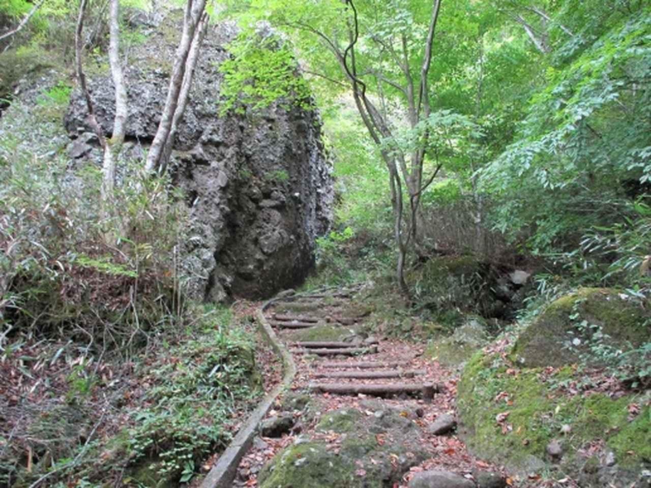 画像2: 岡田健ガイドより、霊山(りょうぜん)ツアーの直前下見報告