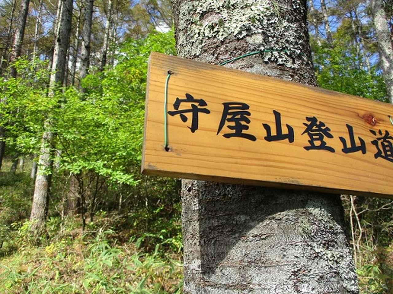 画像1: 【山旅会・登山ガイドこだわりツアー】岡田ガイドからの便り守屋山ツアーにいってまいりました!