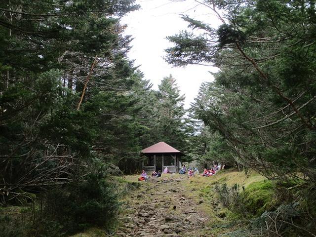 画像9: 【山旅会・登山ガイドこだわりツアー】添乗員からの便り・麦草峠から五辻、坪庭ツアーにいってまいりました!