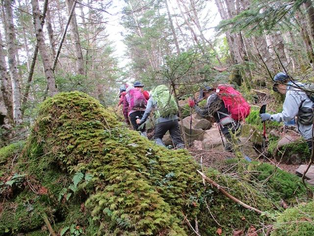 画像2: 【山旅会・登山ガイドこだわりツアー】添乗員からの便り・麦草峠から五辻、坪庭ツアーにいってまいりました!