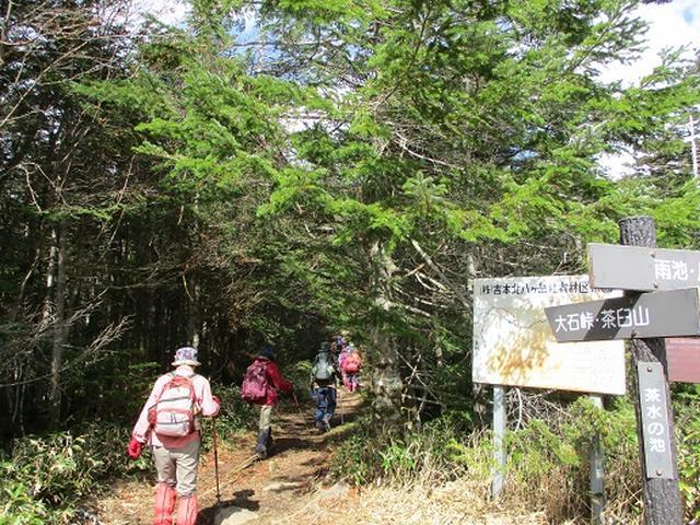 画像1: 【山旅会・登山ガイドこだわりツアー】添乗員からの便り・麦草峠から五辻、坪庭ツアーにいってまいりました!