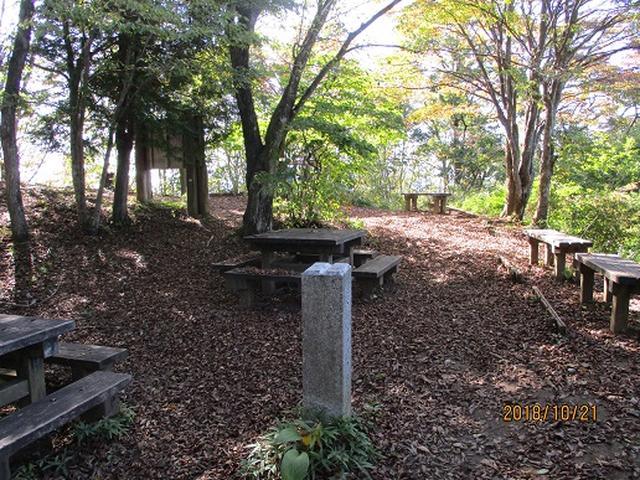 画像9: 【山旅会・登山ガイドこだわりツアー】岡田ガイドからの便り・浅間峠から生藤山ツアーの下見にいってまいりました!