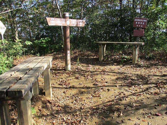 画像6: 【山旅会・登山ガイドこだわりツアー】岡田ガイドからの便り・浅間峠から生藤山ツアーの下見にいってまいりました!