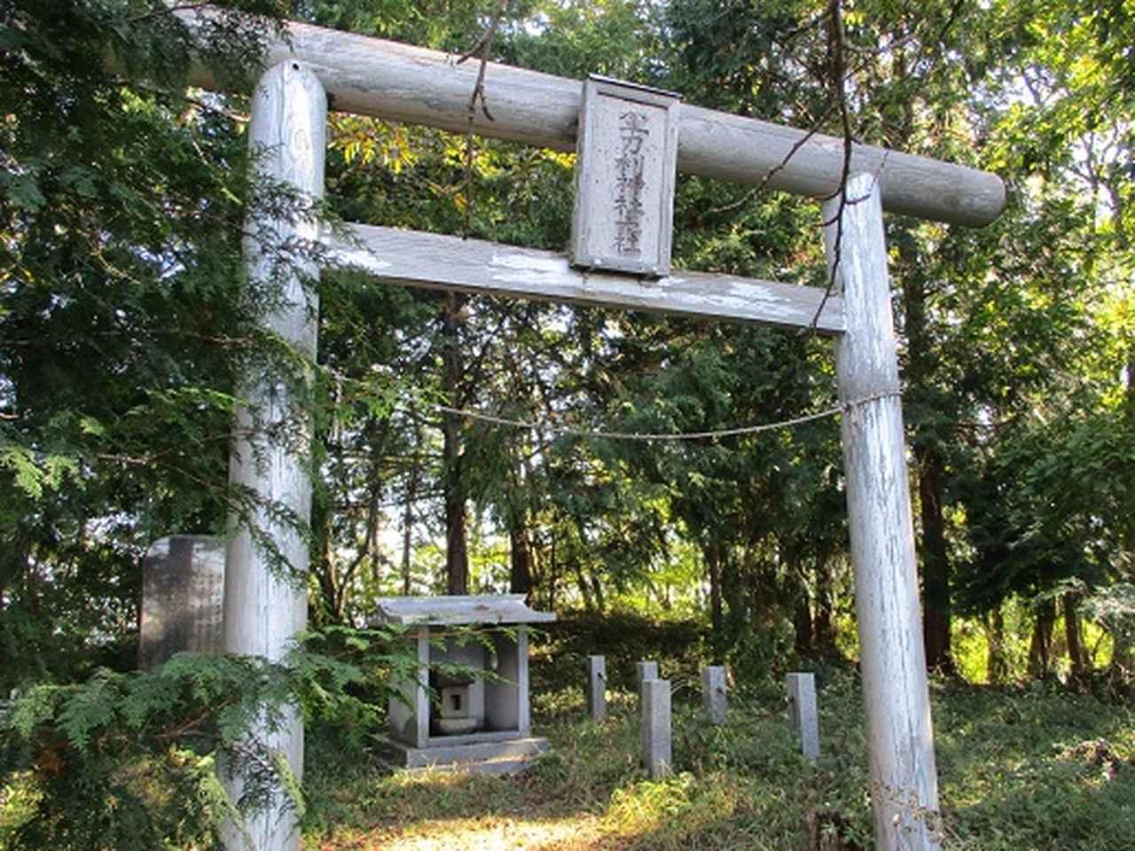 画像7: 【山旅会・登山ガイドこだわりツアー】岡田ガイドからの便り・浅間峠から生藤山ツアーの下見にいってまいりました!
