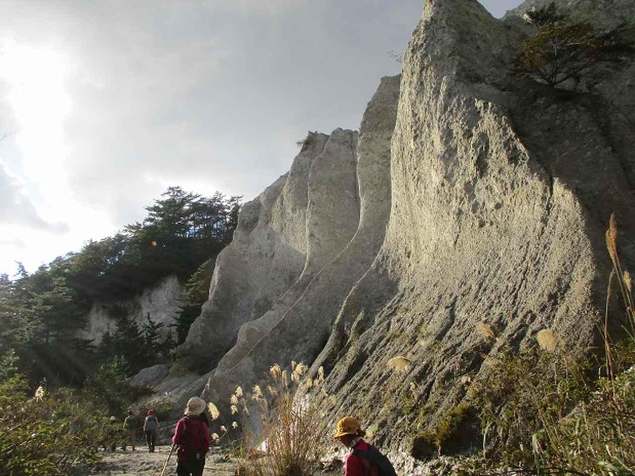 画像4: 【山旅会・登山ガイドこだわりツアー】添乗員からの便り・白神山地ツアーにいってまいりました!(その2)