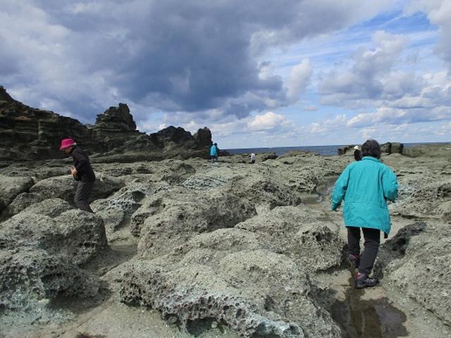 画像3: 【山旅会・登山ガイドこだわりツアー】添乗員からの便り・白神山地ツアーにいってまいりました!(その1)