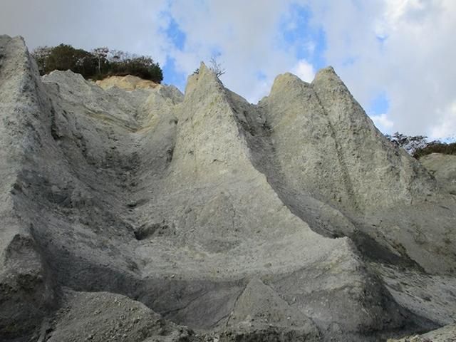 画像5: 【山旅会・登山ガイドこだわりツアー】添乗員からの便り・白神山地ツアーにいってまいりました!(その2)
