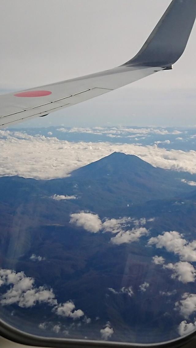 画像1: 【山旅会・登山ガイドこだわりツアー】添乗員からの便り・白神山地ツアーにいってまいりました!(その1)