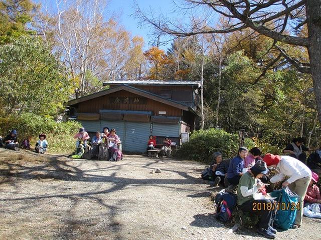 画像6: 【山旅会・登山ガイドこだわりツアー】岡田ガイドからの便り・夜叉神峠から高谷山ツアーにいってまいりました!