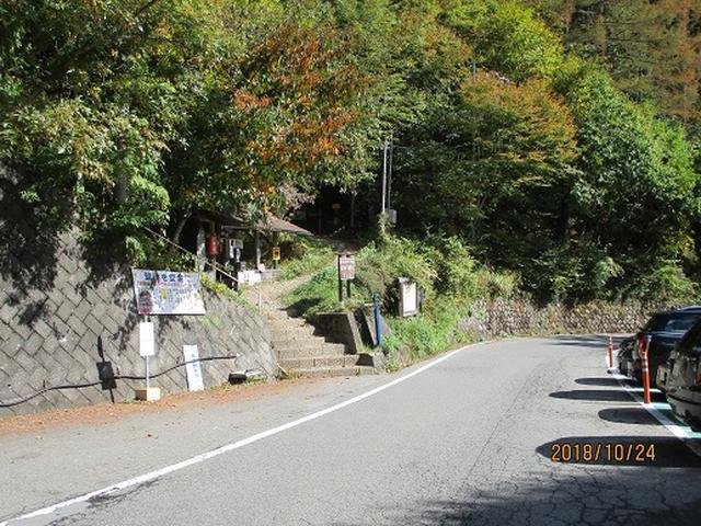 画像1: 【山旅会・登山ガイドこだわりツアー】岡田ガイドからの便り・夜叉神峠から高谷山ツアーにいってまいりました!