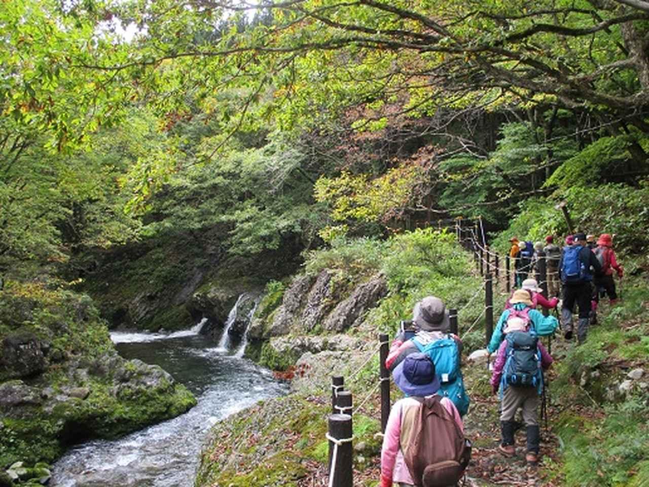 画像8: 【山旅会・登山ガイドこだわりツアー】添乗員からの便り・白神山地ツアーにいってまいりました!(その3)
