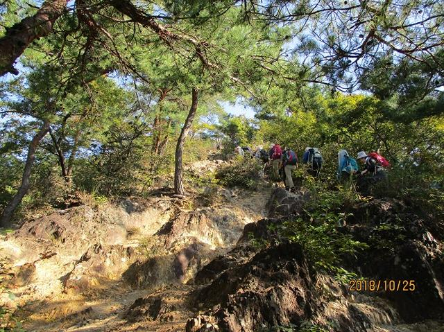 画像3: 【山旅会・登山ガイドこだわりツアー】岡田ガイドからの便り・足利行道山ツアーにいってまいりました!