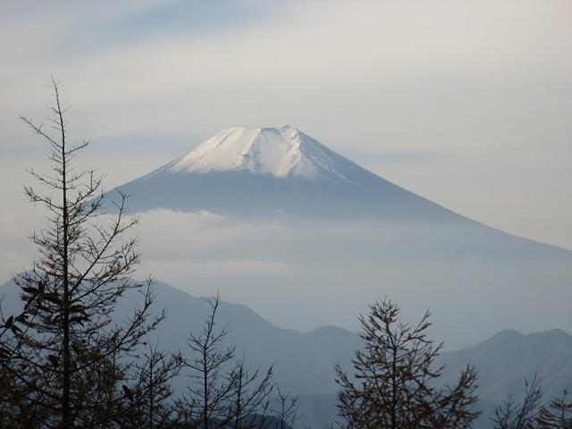 画像6: 【山旅会・登山ガイドこだわりツアー】岡田ガイドからの便り・扇山の下見にいってまいりました!