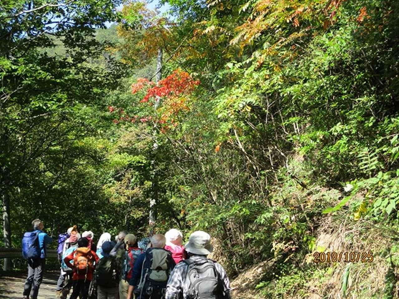 画像5: 【山旅会・登山ガイドこだわりツアー】岡田ガイドからの便り・足利行道山ツアーにいってまいりました!