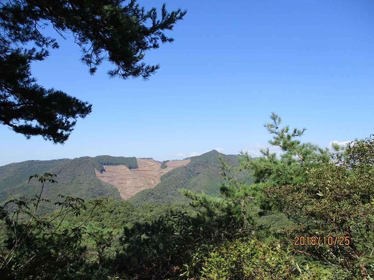 画像4: 【山旅会・登山ガイドこだわりツアー】岡田ガイドからの便り・足利行道山ツアーにいってまいりました!