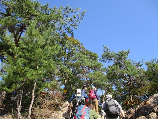 画像2: 【山旅会・登山ガイドこだわりツアー】岡田ガイドからの便り・足利行道山ツアーにいってまいりました!
