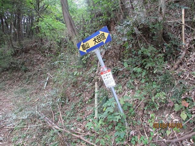 画像1: 【山旅会・登山ガイドこだわりツアー】岡田ガイドからの便り・扇山の下見にいってまいりました!