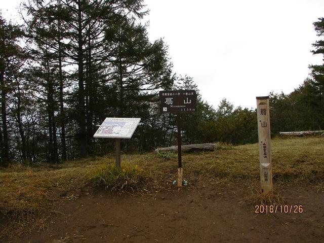 画像5: 【山旅会・登山ガイドこだわりツアー】岡田ガイドからの便り・扇山の下見にいってまいりました!