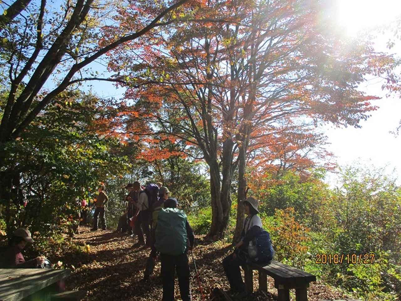 画像9: 【山旅会・登山ガイドこだわりツアー】岡田ガイドからの便り・浅間峠から生藤山ツアーにいってまいりました!
