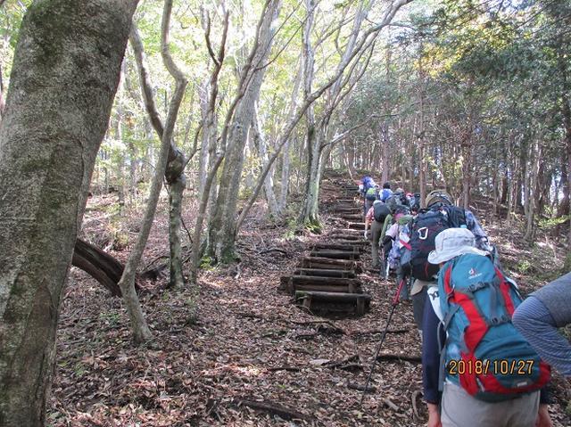 画像4: 【山旅会・登山ガイドこだわりツアー】岡田ガイドからの便り・浅間峠から生藤山ツアーにいってまいりました!