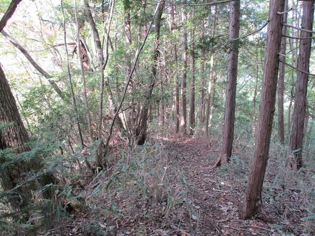 画像10: 【山旅会・登山ガイドこだわりツアー】岡田ガイドからの便り・和田峠から市道山ツアーの下見にいってまいりました!